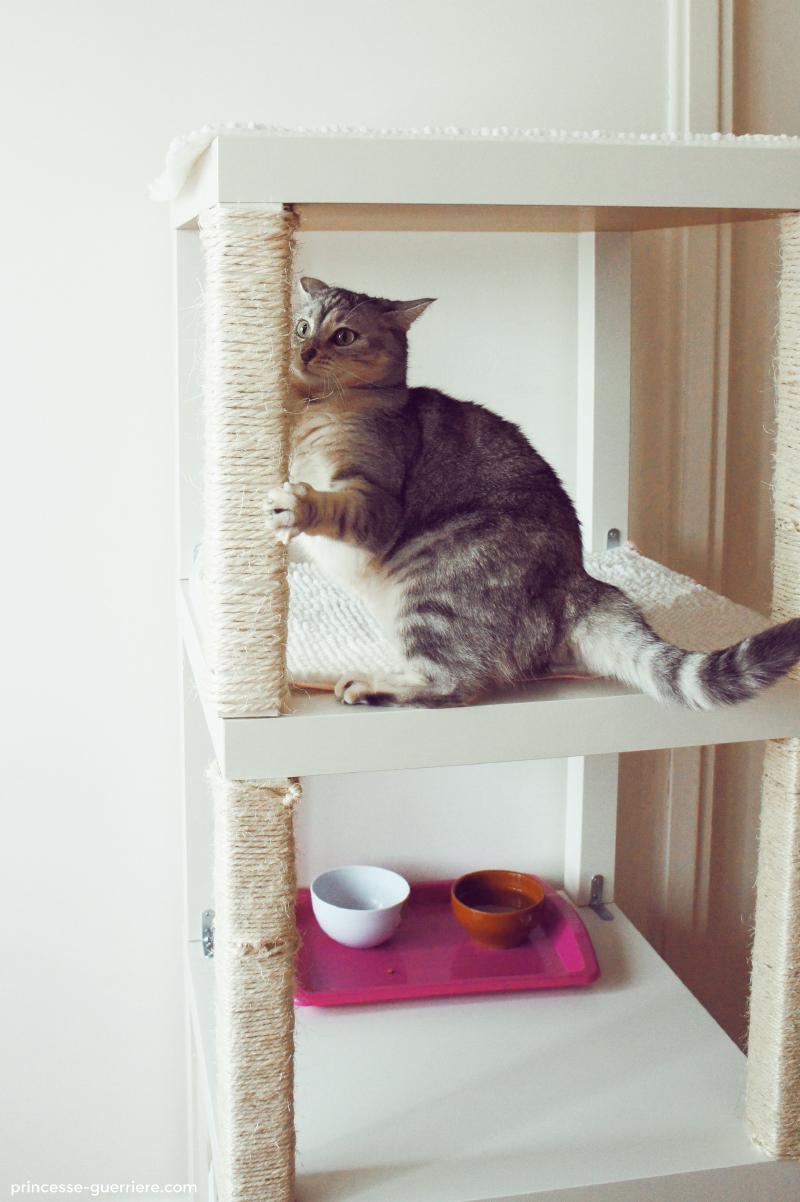 Comment Fabriquer Un Arbre À Chat diy: un arbre à chat ikea !